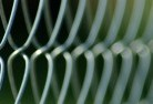 Amor Wire fencing 11